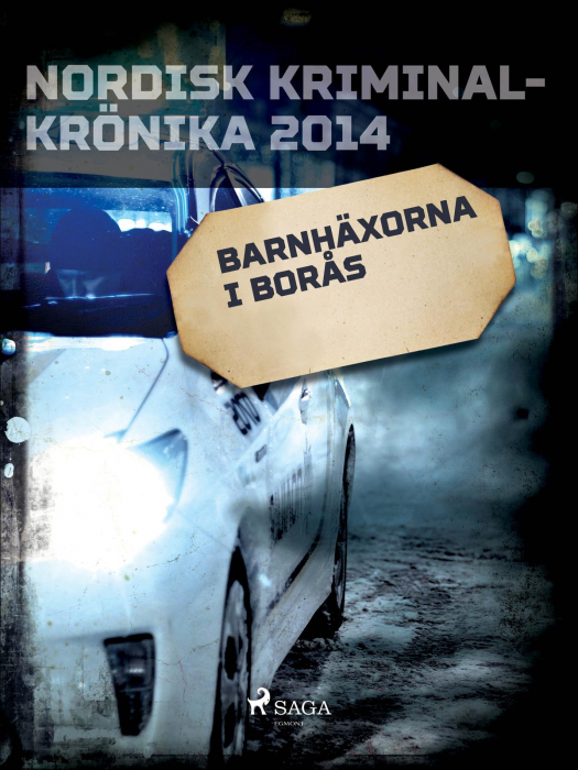 Barnhäxorna i Borås (E-bog)