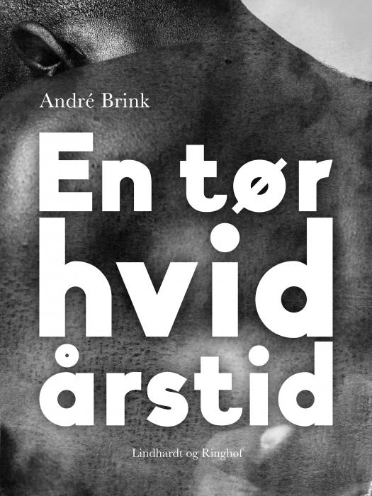 Image of En tør hvid årstid (Bog)