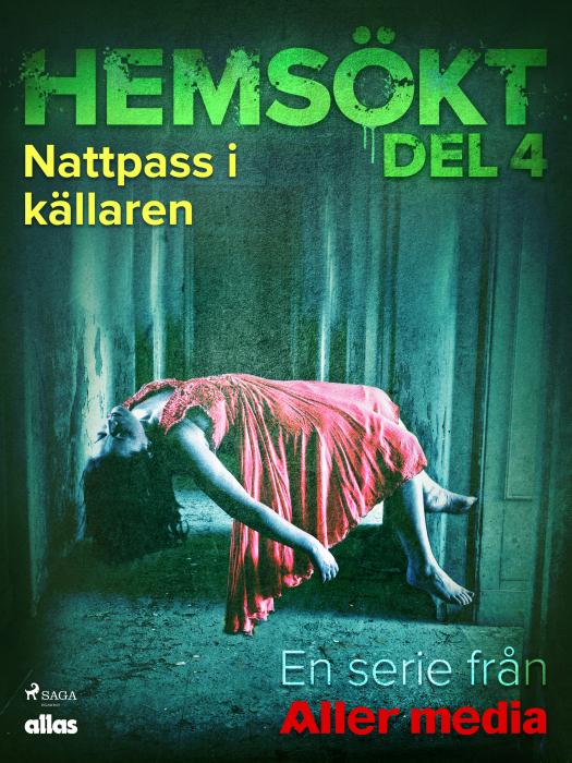 Image of Nattpass i källaren (E-bog)
