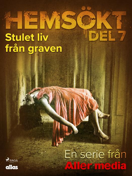 Image of Stulet liv från graven (E-bog)