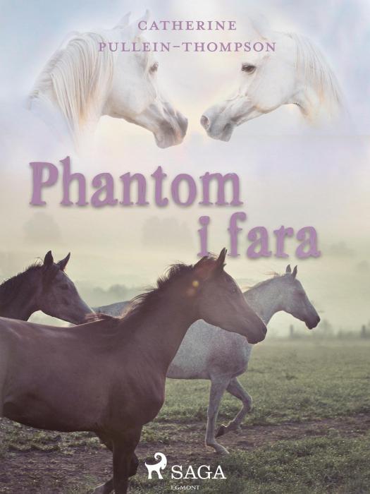 Image of   Phantom i fara (E-bog)