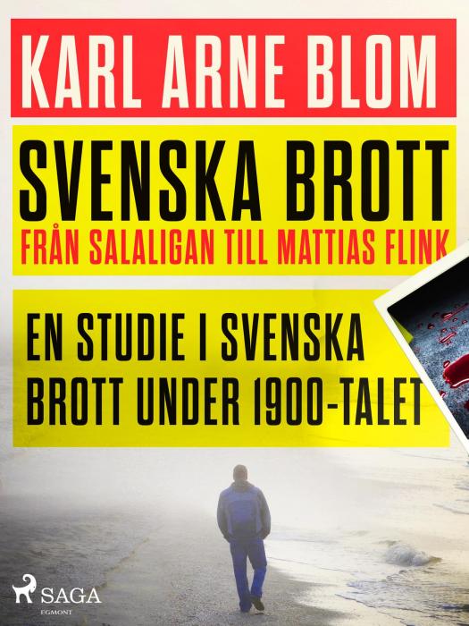 Svenska brott - från Salaligan till Mattias Flink: en studie i svenska brott under 1900-talet (E-bog)