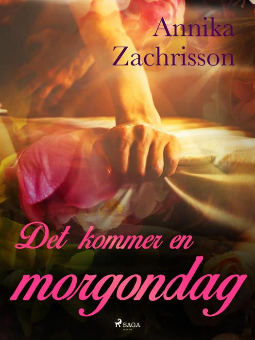 Image of Det kommer en morgondag (E-bog)