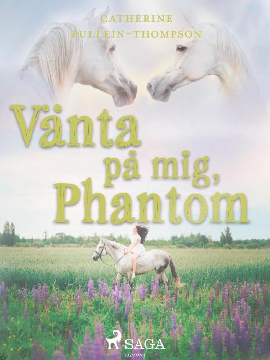 Billede af Vänta på mig, Phantom (E-bog)