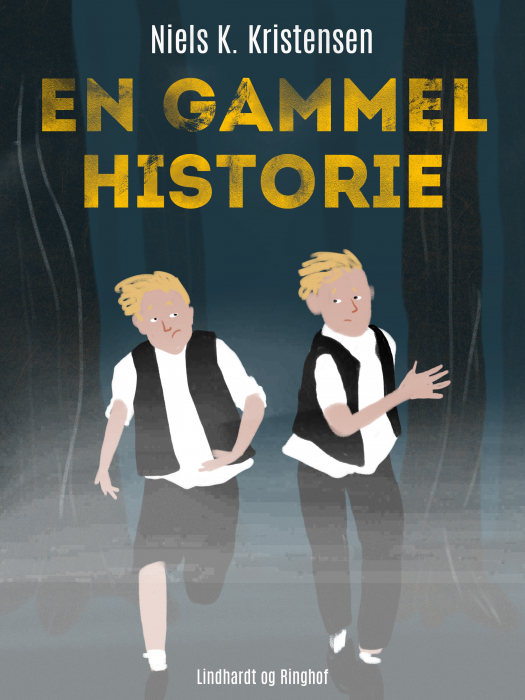En gammel historie (E-bog)