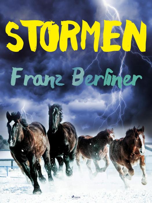 Stormen (E-bog)